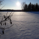 Konkurs Białopole Zimą